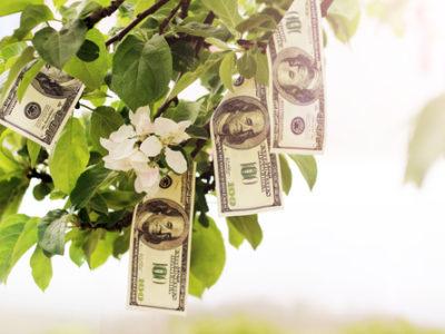 FINANCIAL MATURITY
